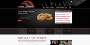 RTS Snip Image of RTS web site